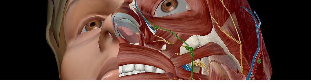 human anatomy atlas pdf download